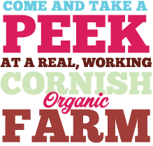 Come and take a peek at a real, working Cornish organic farm