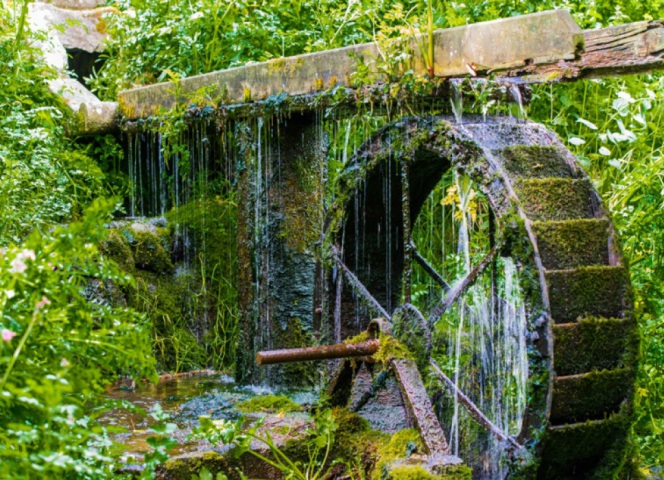 The water wheel  which is at the end of the ponds , but at the beginning of the woods