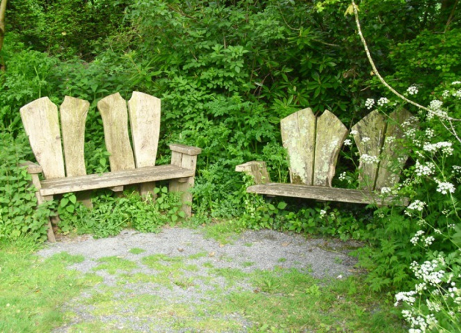 Wooden seats are dotted, at good vantage points, along the pathways through the ponds and woods.