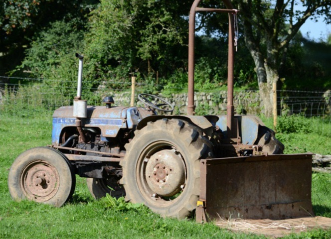 One of our older tractors,  its been on the farm for over 40 years now.